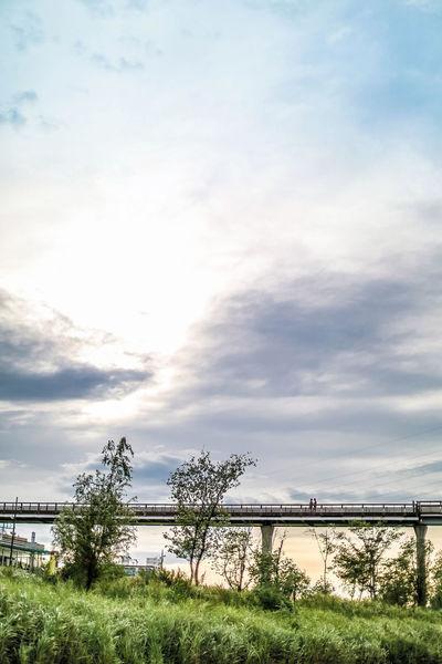 사랑하는 사람과있다면 시간도 짧게 느껴지고 함께 걷는 이다리도 짧게만 느껴지겠죠Sunset Silhouettes Walking With My Love(: Bridge Of Happiness