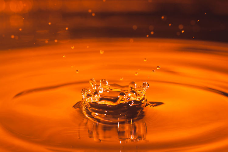 Close-up Drop Freshness High-speed Photography Motion Nature No People Orange Color Purity Rippled Splashing Splashing Droplet Water Waterfront