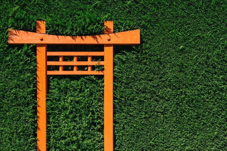 An orange torii gate in a garden hedge.