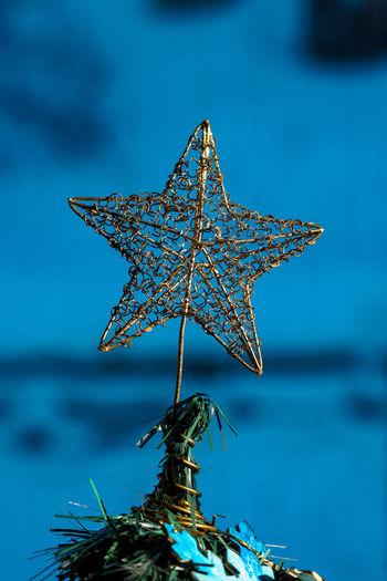 Christmas Decor Gold Xmas Xmas Decorations Xmas Tree Blue Christmas Decoration Christmas Tree Close-up Day Decoration Decorations Gold Colored No People Outdoors Star