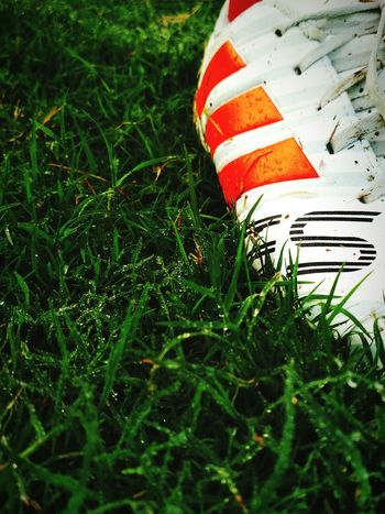 Football shoe football ground sports Grass Green Color Field Sport No People Day Outdoors Soccer Shoe Nature Close-up