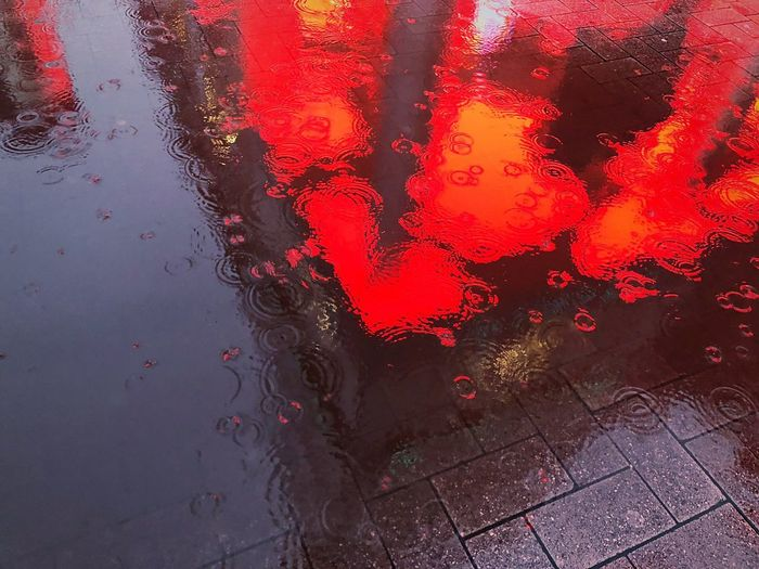 Light Red Wet