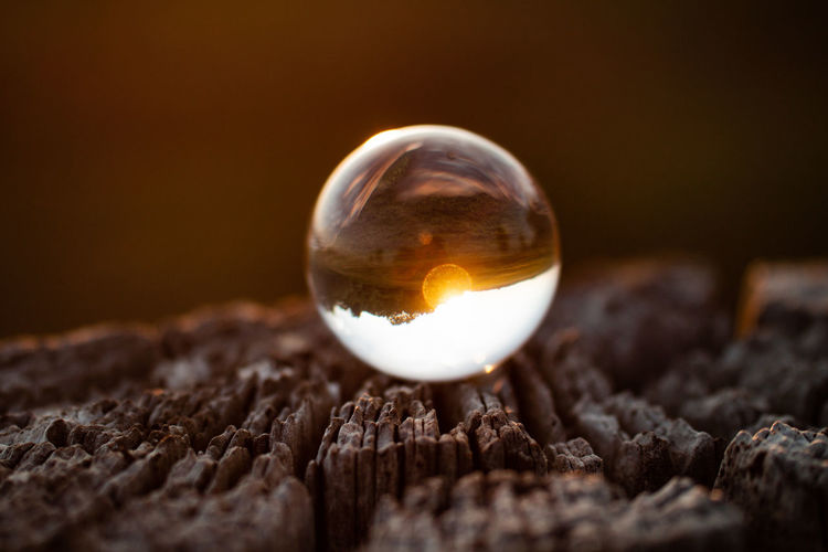 Close-up Selective Focus Single Object Sphere No People Nature Egg Studio Shot Fortune Telling Food Indoors  Food And Drink Fragility Wood - Material Crystal Ball Copy Space Beginnings Macro Crystal Black Background Contemplation Ball Glass - Material Sunset Nature EyeEmNewHere