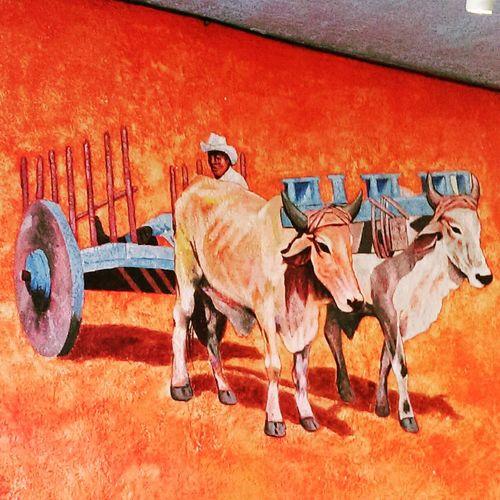 One of the walls from the restaurant Red Enchilada where I ate Enchiladas for dinner yesterday.