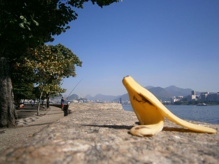 The Protagonist Rio De Janeiro - Brasil Urca ConsciênciaAmbiental Eyeem Market Banana Bad Behavior  Yellow Fruit The Art Of Street Photography Water Sea Tree Nautical Vessel Beach Sky Coastline Horizon Over Water