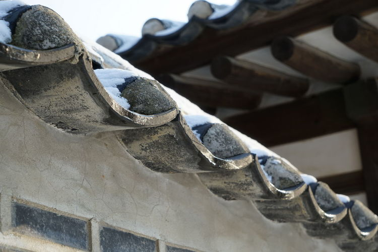 Changduk Palace Korean Traditional Architecture UNESCO World Heritage Site Winter Close-up Day Focus On Foreground Low Angle View No People Outdoors Seoul City Snow Travel Destinations
