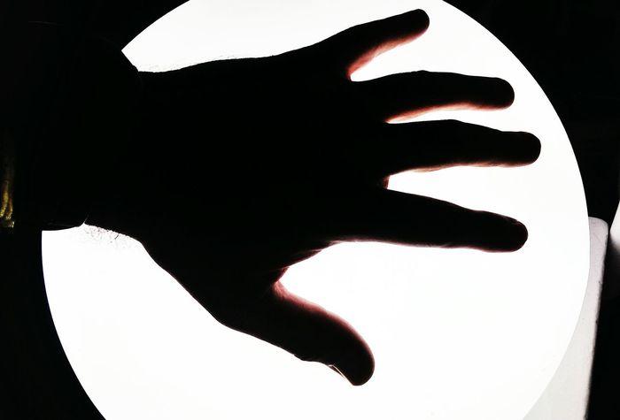Comenzado la iluminación por la zurda. Shadow My Hand