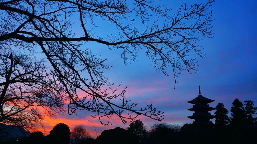 B itchu kokubunji, soja, okayama, japan, sunset, castle, Sky Sunset Tree Silhouette Nature No People Outdoors Beauty In Nature Low Angle View Branch Urban Skyline Day First Eyeem Photo