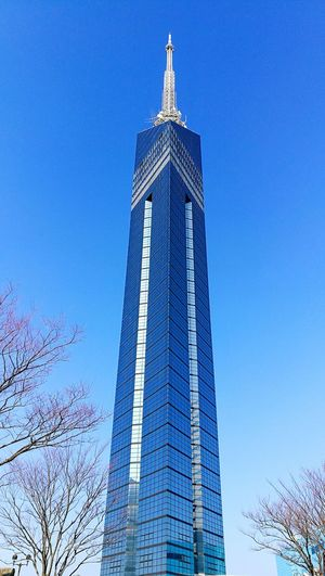 Adapted To The City Cityscape Built Structure Skyscraper Travel Destinations City Tower Cultures Outdoors Day Clock Clock Tower Architecture Tourism No People Sky Blue Tranmissiontower Sakura Wintertime Bestshot Japan Photography First Eyeem Photo Fukoka Fukuoka Tower