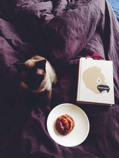 Morning mood Good Morning! First Eyeem Photo