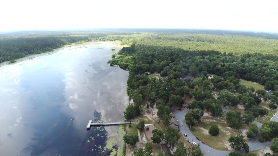 Lake View Lake Tree Water Plant High Angle View Beauty In Nature Nature Day No People Sky Tranquil Scene Scenics - Nature Growth Aerial View Tranquility Green Color Land Outdoors Environment
