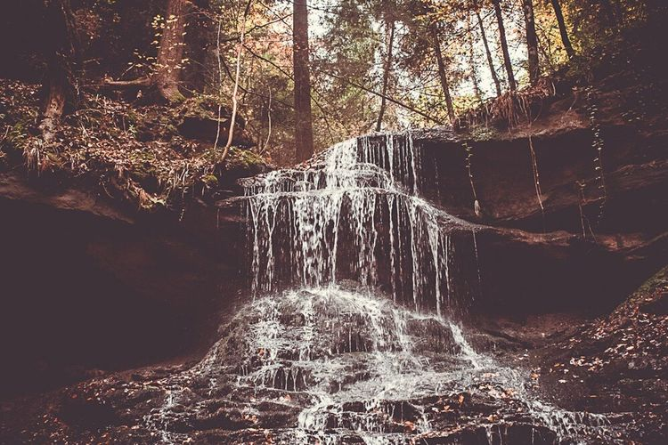 Forest Motion Rock - Object River Water Tree No People Nature Outdoors Waterfall Day Beauty In Nature Freshness