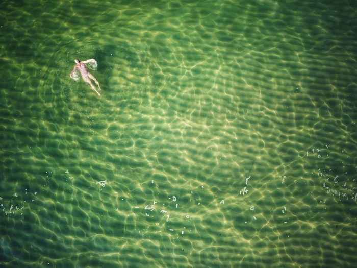 Wild And Free Alone In The Sea Water Aerial Aerial View High Angle View Seascape Sea Swiming Swimming In The Sea Water Rippled High Angle View Backgrounds Sea Life Floating In Water The Great Outdoors - 2019 EyeEm Awards