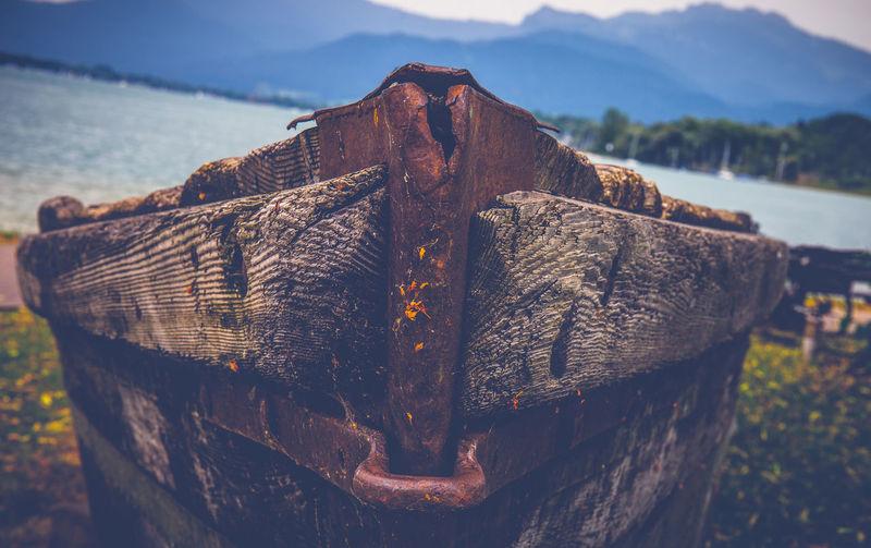 Close-up of damaged tree stump