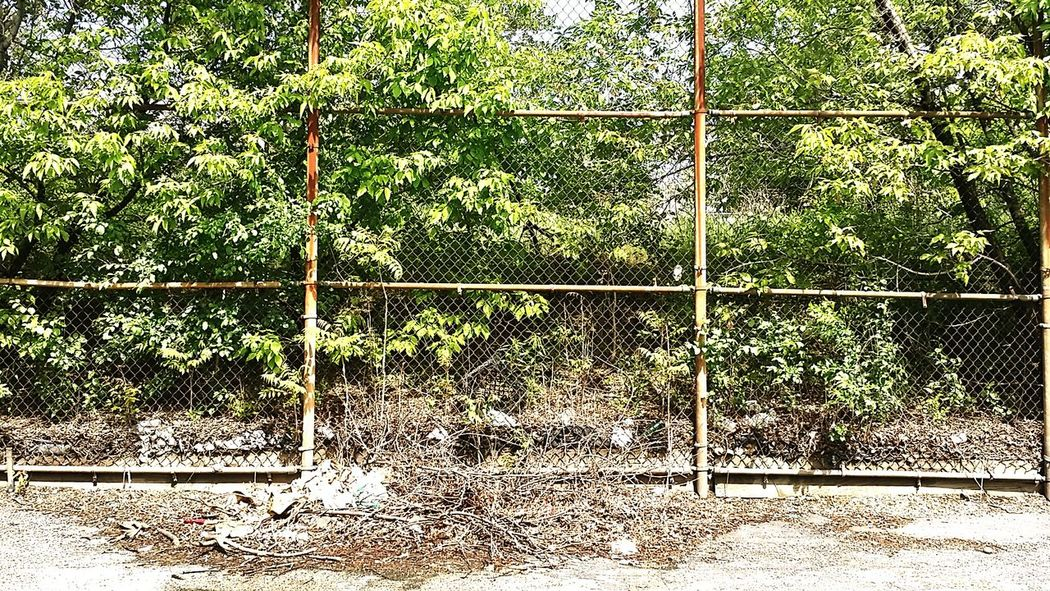 Taking Photos Just Out Of Reach  Abandoned Places Urban Jungle Chain Link Fence Chicago Taking Photos