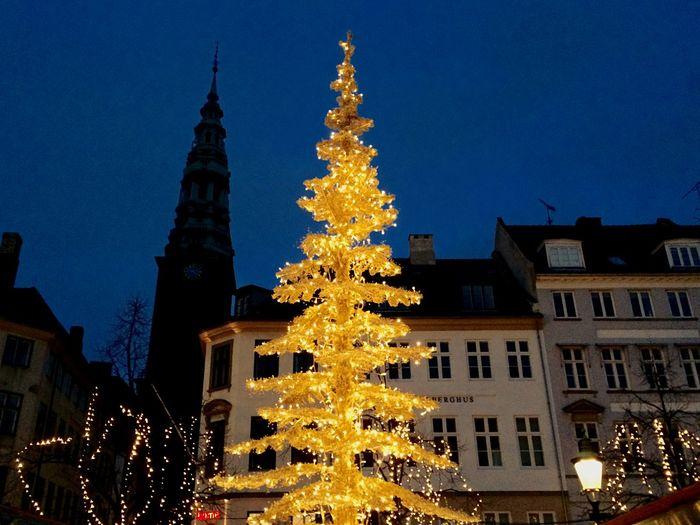 Christmas Tree Europe Copenhagen Christmas Lights
