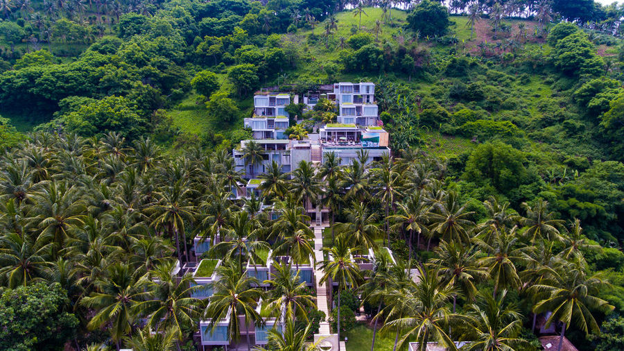 The beauty of tropical hotels in the middle of green mountains Plant Tree Growth Nature Green Color Land Architecture Agriculture Day Building Exterior Built Structure High Angle View House No People Tropical Climate Scenics - Nature Building Food And Drink Crop  Fruit Outdoors Lombok Resort Resort Hotel Hotel