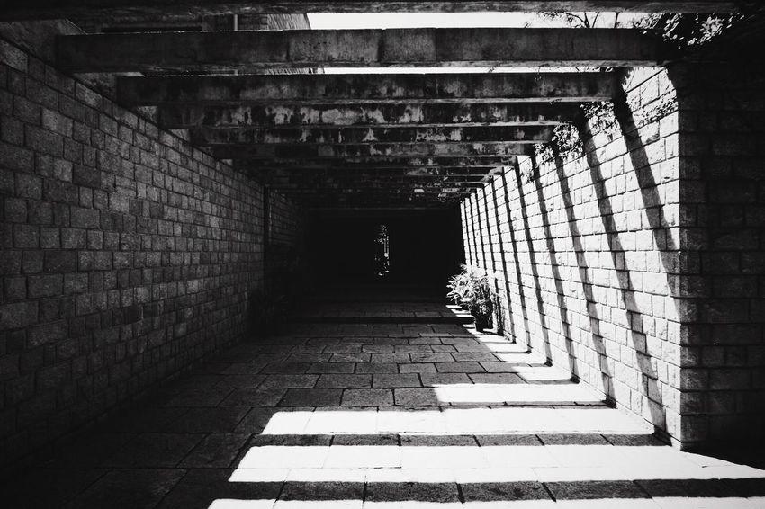 Blackandwhite EyeEm Bnw EyeEm Best Shots - Black + White (null)Architecture_collection Pergola Eyeem Market EyeEmBestPics EyeEm Architectureporn The Week Of Eyeem EyeEm Best Shots Architecturelovers Architecturephotography Architecture The Architect - 2016 EyeEm Awards Shadows On The Wall Shadowplay Lines Leading Lines Light And Shadow Perspective One Point Perspective