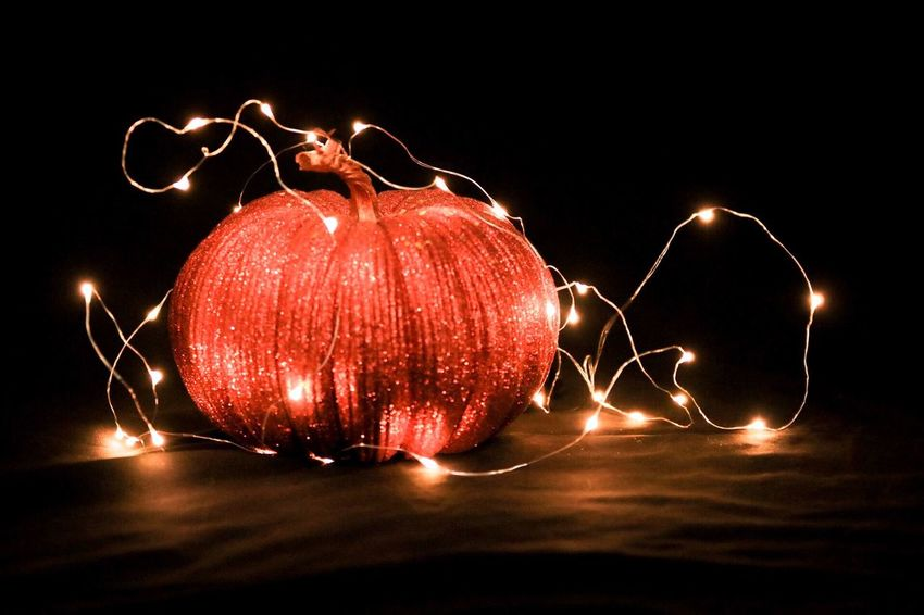 Studio Shot Black Background Night Illuminated No People Light Trail Close-up Indoors  Christmas Lights Lightning Halloween Freshness Pumpkin Glowing Halloween Holidays Mini Lights Autumn Fall Decorations Warm Orange Thanksgiving In Studio Welcoming