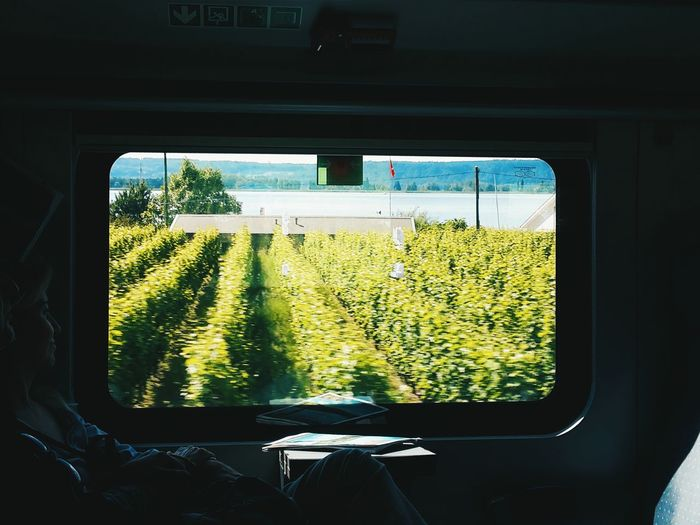 The Journey Is The Destination Train Train Window View On The Road Trip Adventure Club On The Way First Eyeem Photo Photography Relaxing Enjoying Life