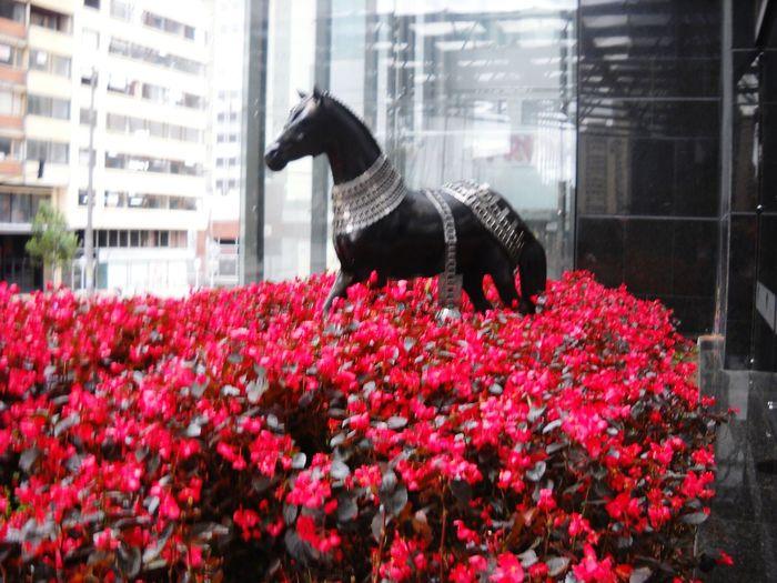 Hermoso caballo entre flores