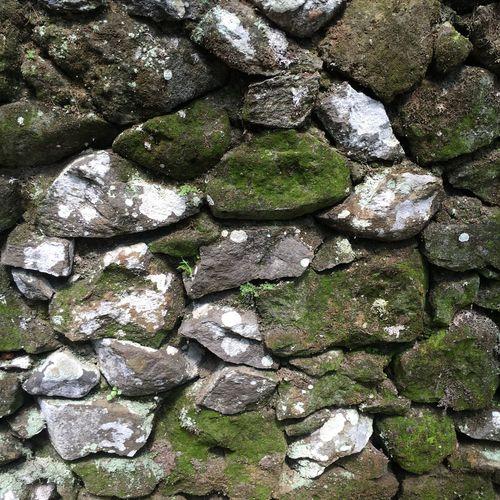 Rock Rocks Stones Rock Wall Stone Wall Moss Moss Rock Rock Moss Mossy Mossy Rock