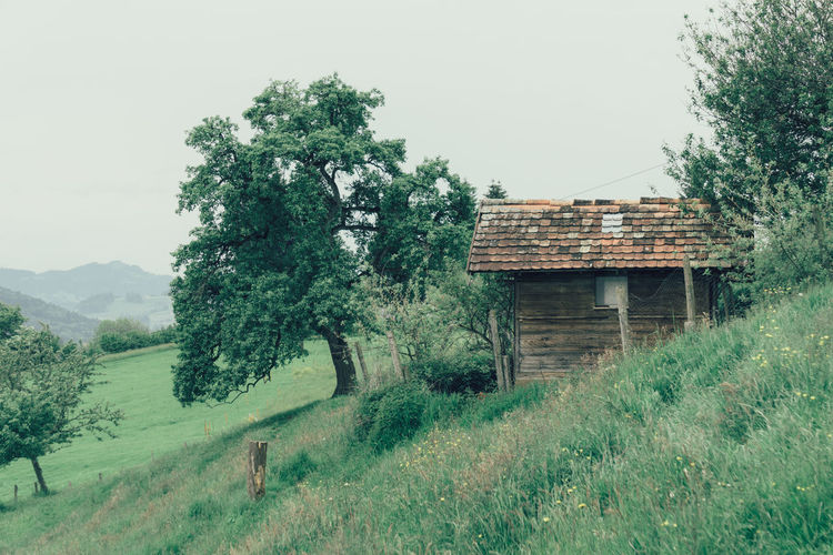 Log cabin by grass and trees against sky