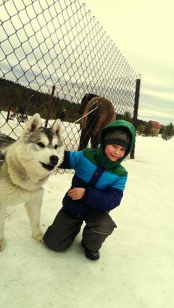 Любить животных!!!