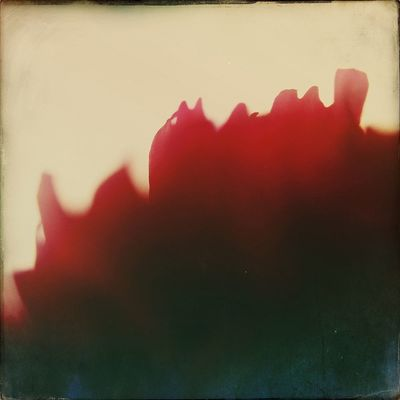Hipstamacro Hipstamatic Abstract My life in flames.