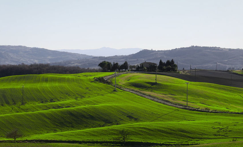 Scenics - Nature Landscape Val D Orcia Green Color Mountain Tranquil Scene Land Agriculture Mountain Range Grass Outdoors Rolling Landscape Growth Field Sky Environment Farm
