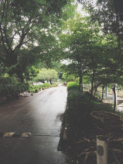 落雨落雨,突然好想去旅游