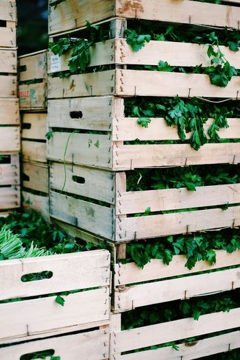 Parsleys In Wooden Crates For Sale At Market