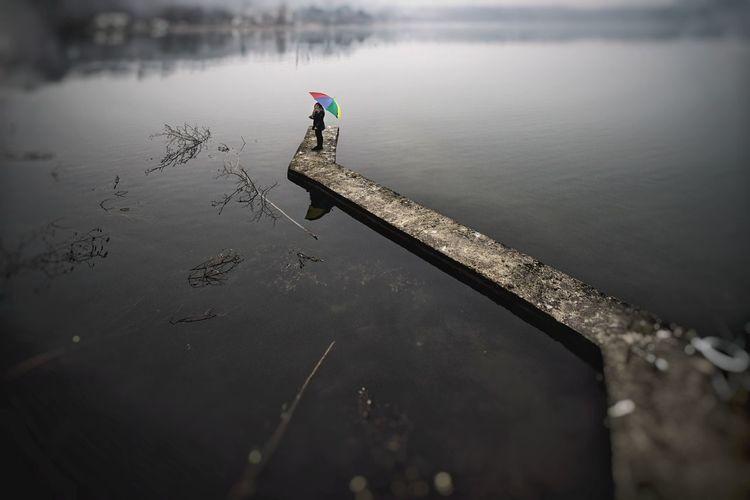 High angle view of duck on lake