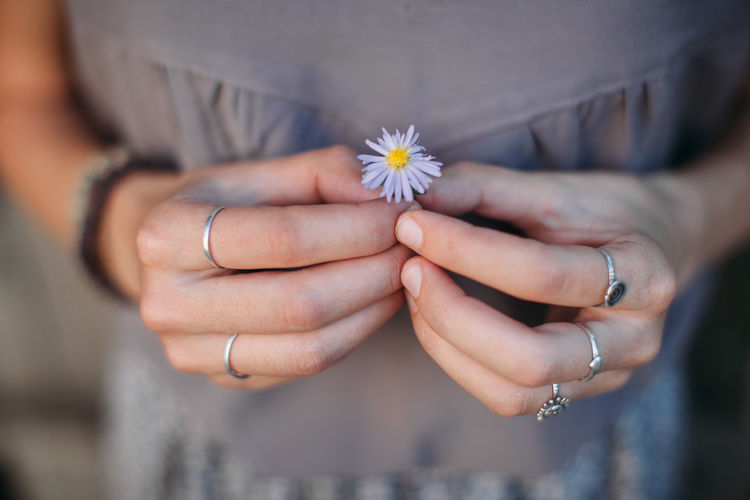 Fingers Flower Fragility Freshness Hands Holding Nature Person Rings Softness