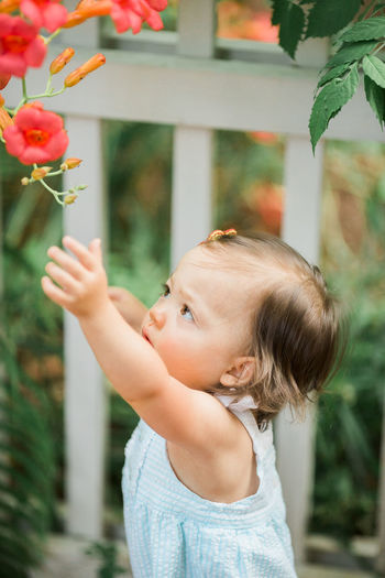 Little girl picking a flower Authentic Moments Baby Lifestyle The Week on EyeEm Childhood Children Only Close-up Cute Day Flower Flowers Freshness Garden Growth Innocence Nature One Person Outdoors People Picking Flowers  Plant Real Life Real People Toddler  Tree