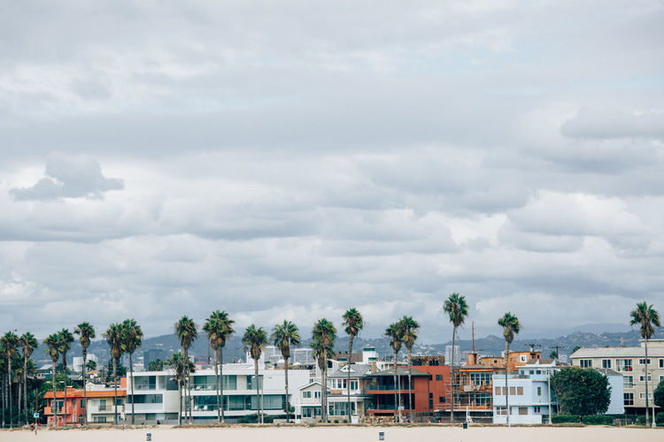 Venice beach with palms send and houses Los Angeles Skyline Los Angeles, California Los Ángeles United States Venice Beach Architecture Beach Beach Sand Building Exterior Built Structure City Cityscape Cloud - Sky Clouds Clouds And Sky Day House La Outdoors Pulm Tree Residential Building Sand Sky Tree Venice