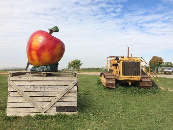 Apples on field against sky
