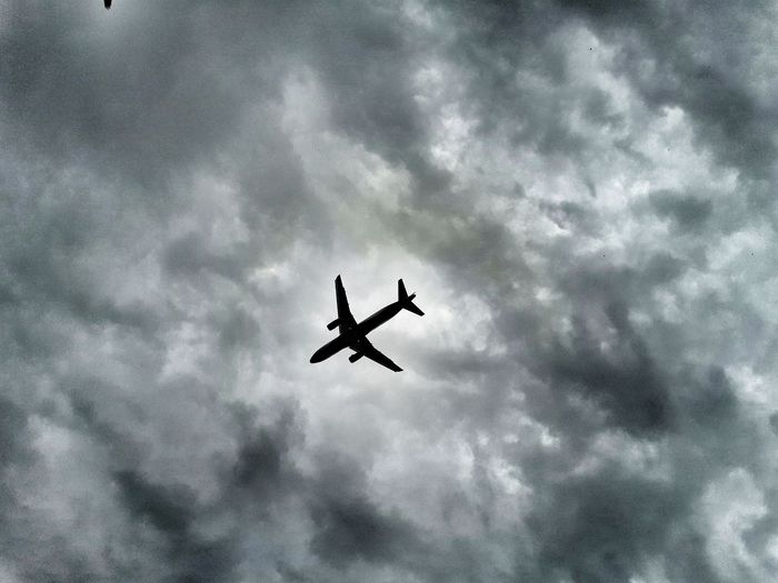 Fly in the sky.... EyeEmNewHere