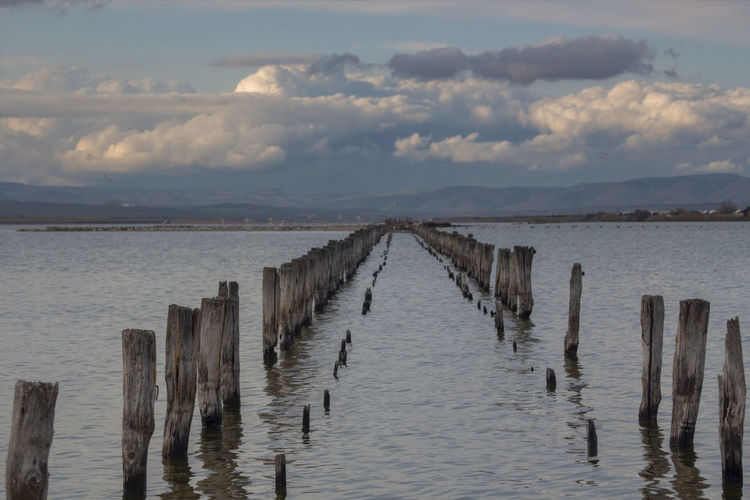 Water Cloud - Sky Sky Sea Post Tranquil Scene Wood - Material Wooden Post Scenics - Nature Tranquility Nature Beauty In Nature No People Waterfront Day Outdoors Non-urban Scene Horizon Pier Groyne