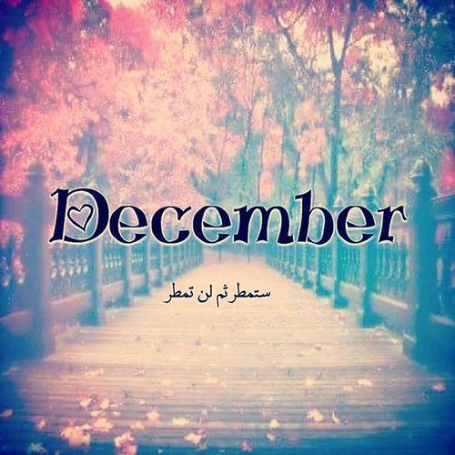 December Decemberchallenge Decemberphotochallenge Dicembre Dicember DECEMBER2015 ديسمبر ديسمبر2015 دجمبر دجنبر كانون كانون_الاول Decem Dezember Dezember2015 Diciembre Diciembre2015 Decembrie