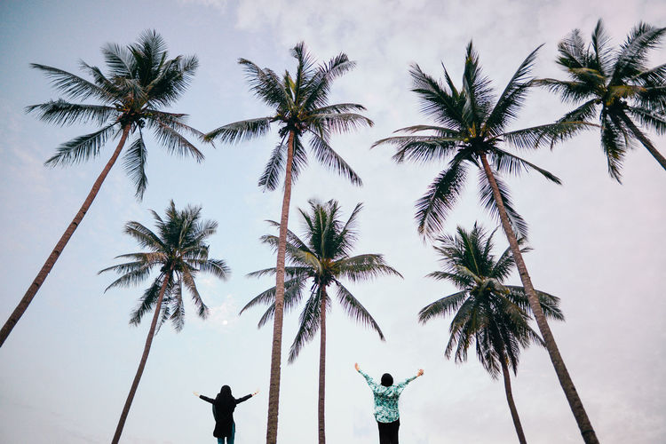 Rear view of friends with arms outstretched standing amidst palm trees against sky