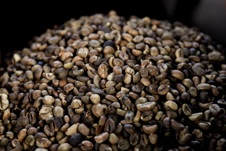 Unroasted Coffe Beans Close-up Coffee Bean Food Food And Drink Freshness Healthy Eating Horizontal Indoors  Large Group Of Objects No People