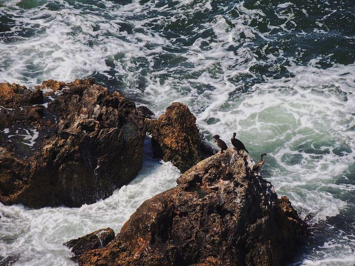 Panoramic view of rocks in sea