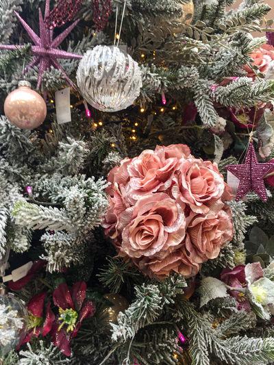 High angle view of roses on christmas tree