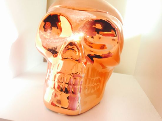 Decorative Skull ❤️🌸 Decoration Skull Rose Gold Soft White Background Single Object Close-up Indoors  No People Red Color