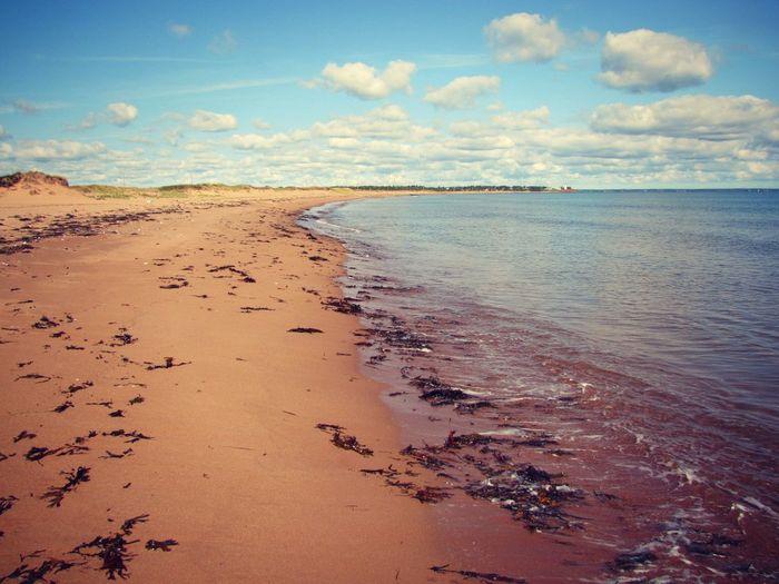 Panmure Island beach, PEI Beach Calm Canada Cloud - Sky Coastline East Coast Landscape Nature Outdoors Panmure Island Paradise Peaceful Pei Prince Edward Island Sand Sea Shore Sky Water