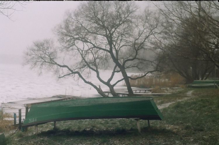 Boat Boats Cold Temperature Lake Lake View Lakeshore Outdoors Season  Shore Showcase: February Snow The Week Of Eyeem Trees Weather Winter Winter Wintertime Wintwer