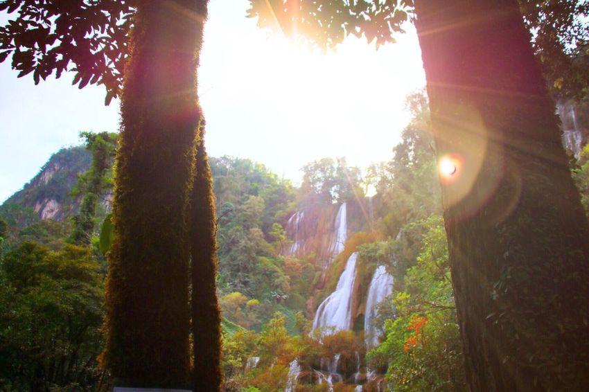 ทีลอซู ลอซู ลอซู Beauty In Nature Outdoors EyeEm Gallery Lifestyles