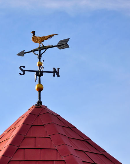 Pheasant topped wind vane on a red shingled roof. Architecture Building Exterior Built Structure Clear Sky Day Direction Guidance Low Angel View No People Outdoors Roof Sky Weather Vane