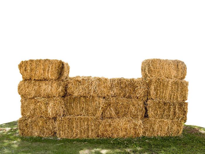Dry straw on